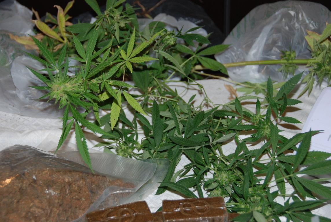Una piccola parte della droga sequestrata venerdì