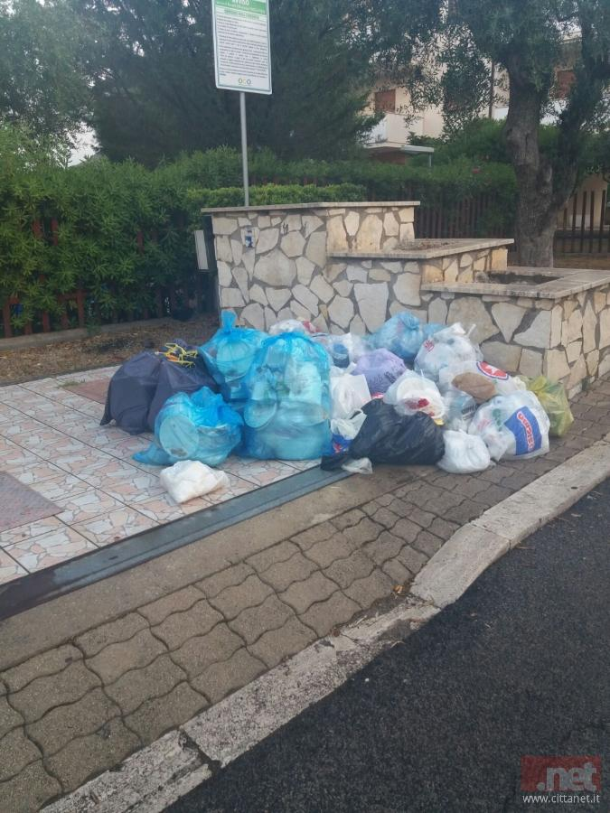 Il provvedimento si è reso necessario per via dei numerosissimi turisti e dell'eccessiva presenza di rifiuti in città